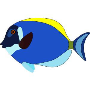 Schulranzen Fische