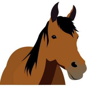 Schulranzen Pferde