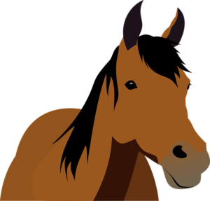 Pferde Schulranzen
